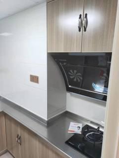 苏农汇丰复式公寓2两室1厅全新精装修出租