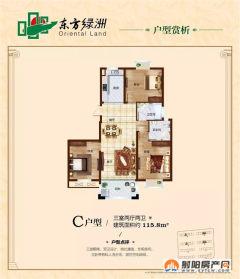 出售东方绿洲3室2厅1卫117.5m²豪华装修