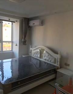 (城西)苏农汇丰1室1厅1卫精装修公寓出租